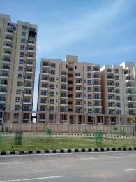 1191 sqft, 2 bhk Apartment in TDI Wellington Heights Sector 117 Mohali, Mohali at Rs. 39.0000 Lacs