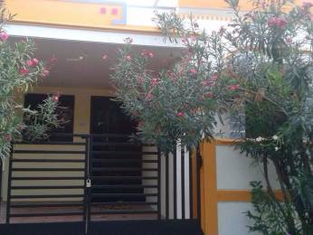 1332 sqft, 2 bhk IndependentHouse in Builder Project IOB Colony, Coimbatore at Rs. 7000