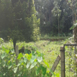 14370 sqft, Plot in Builder Project KeekozhoorUthimoodu Road, Pathanamthitta at Rs. 20.0000 Lacs