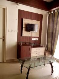 923 sqft, 2 bhk Apartment in Unique My Haveli Ajmer Road, Jaipur at Rs. 12000