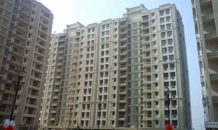 1165 sqft, 2 bhk Apartment in Builder Project Sector 39 Bhiwadi, Bhiwadi at Rs. 35.0000 Lacs