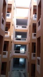 1000 sqft, 3 bhk Apartment in Builder Project Raebareli Road, Lucknow at Rs. 10000