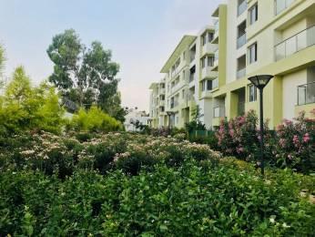 1549 sqft, 3 bhk Apartment in Zonasha Elegance Kasavanahalli Off Sarjapur Road, Bangalore at Rs. 30000