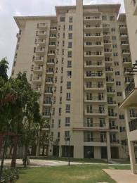 1020 sqft, 2 bhk Apartment in Emaar Emerald Estate Sector 65, Gurgaon at Rs. 22500