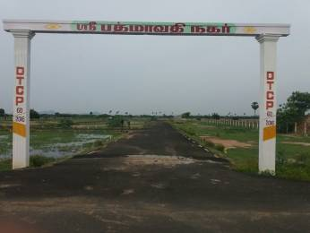 1200 sqft, Plot in Builder Padmavathi Nagar near Chengalpattu Chengalpattu, Chennai at Rs. 5.4000 Lacs