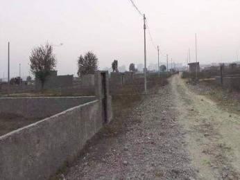 1000 sqft, Plot in Builder Project INFO CITY SEC 34, Gurgaon at Rs. 12.0000 Lacs