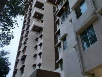 765 sqft, 2 bhk Apartment in DLH Kesley Borivali West, Mumbai at Rs. 1.6500 Cr