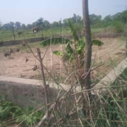 1000 sqft, Plot in Builder ekta vihar Bahadarabad Bypass, Haridwar at Rs. 30.0000 Lacs