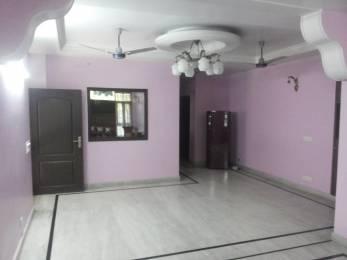 1000 sqft, 1 bhk Apartment in Ansal Sushant Lok 1 Sushant Lok Phase - 1, Gurgaon at Rs. 14999