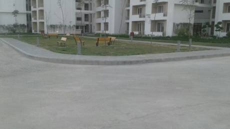 988 sqft, 2 bhk Apartment in 3C Lotus Zing Sector 168, Noida at Rs. 49.0000 Lacs