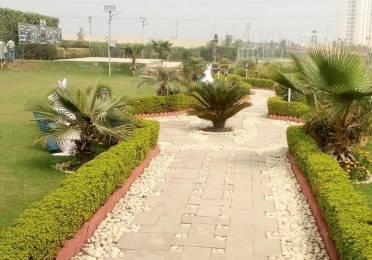 10872 sqft, Plot in Ecnon Sports Land Farms Sector-151 Noida, Noida at Rs. 50.0000 Lacs