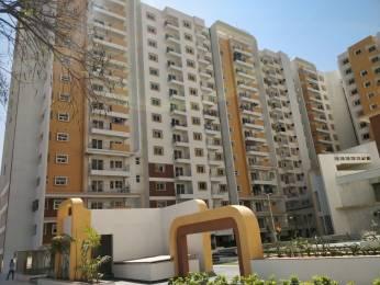 1570 sqft, 3 bhk Apartment in MJR Pearl Kadugodi, Bangalore at Rs. 30000