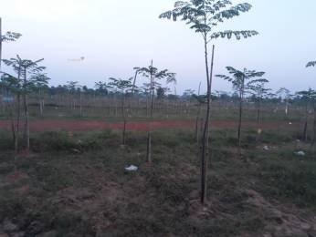 1080 sqft, Plot in Builder SS Developers Rajanagaram Road, East Godavari at Rs. 5.0000 Lacs