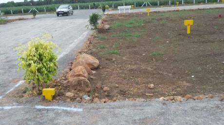 167 sqft, Plot in Builder Project Kantheru Road, Guntur at Rs. 18.3700 Lacs
