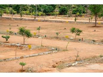 1000 sqft, Plot in Kanchan Vrundavan Uruli Kanchan, Pune at Rs. 3.5000 Lacs