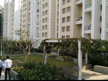 1047 sqft, 2 bhk Apartment in Kumar Princeville Chikhali, Pune at Rs. 10000