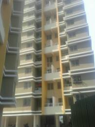 606 sqft, 1 bhk Apartment in Sree Shree Mangal Daffodils Avenue Somatane, Pune at Rs. 22.0000 Lacs