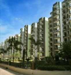1852 sqft, 3 bhk Apartment in  Maya Garden City Nagla, Zirakpur at Rs. 15000