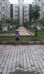 750 sqft, 2 bhk Apartment in VBHC Value Homes Vaibhava Kengeri Kengeri, Bangalore at Rs. 8000