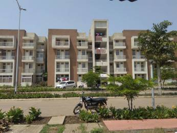 1196 sqft, 3 bhk Apartment in IBD Greenearth City Amleshwar, Raipur at Rs. 23.0000 Lacs