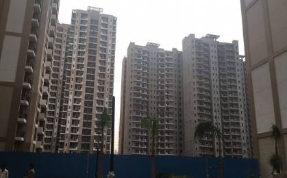 1555 sqft, 3 bhk Apartment in Nimbus The Golden Palms Sector 168, Noida at Rs. 72.0000 Lacs