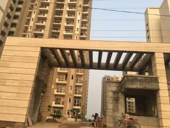 1085 sqft, 2 bhk Apartment in Nimbus The Golden Palms Sector 168, Noida at Rs. 45.0000 Lacs