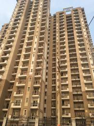 2473 sqft, 4 bhk Apartment in Nimbus The Golden Palms Sector 168, Noida at Rs. 1.1000 Cr