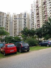 1665 sqft, 3 bhk Apartment in Purva Highland Anjanapura, Bangalore at Rs. 18000