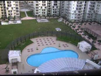1082 sqft, 2 bhk Apartment in Supertech Ecociti Sector 137, Noida at Rs. 12000