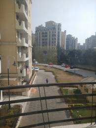 815 sqft, 1 bhk Apartment in Jaypee The Pavilion Court Sector 128, Noida at Rs. 12000