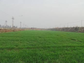 1072 sqft, Plot in Builder Project Dabur Chowk, Ghaziabad at Rs. 23.0000 Lacs