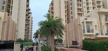 971 sqft, 3 bhk Apartment in BPTP Park Elite Premium Sector 84, Faridabad at Rs. 42.0000 Lacs