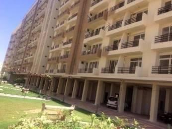1200 sqft, 3 bhk Apartment in SSG Shankra Residency Ajmer Road, Jaipur at Rs. 25.0000 Lacs