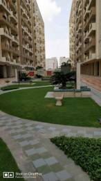 1200 sqft, 3 bhk Apartment in Shiv Shakti Group Jaipur Shankra Residency Ajmer Road, Jaipur at Rs. 28.0000 Lacs
