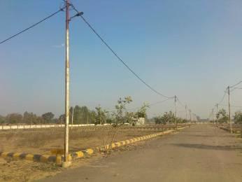 1125 sqft, Plot in Surya Surya Vihar Phase IV Indira Nagar, Lucknow at Rs. 14.0625 Lacs