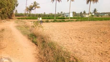 1200 sqft, Plot in Builder KVR HOMES Yeliyur, Bangalore at Rs. 4.5000 Lacs
