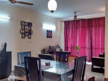 8000 sqft, 7 bhk IndependentHouse in Builder Project Sector 61, Noida at Rs. 1.5000 Lacs