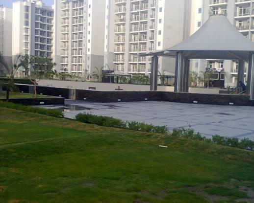 1140 sqft, 2 bhk Apartment in Amrapali Sapphire Sector 45, Noida at Rs. 18000