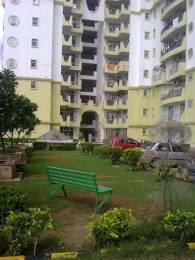 3075 sqft, 4 bhk Apartment in Amrapali Sapphire Sector 45, Noida at Rs. 30000