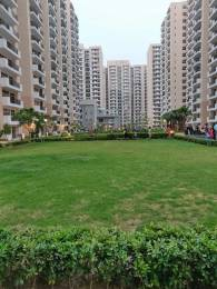 1365 sqft, 3 bhk Apartment in Nirala Aspire Sector 16 Noida Extension, Greater Noida at Rs. 7000