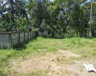280 sqft, Plot in Builder Project Nadakkave, Kozhikode at Rs. 57.5000 Lacs