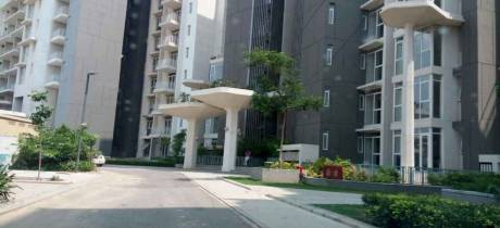 1467 sqft, 2 bhk Apartment in Ireo Victory Valley Sector 67, Gurgaon at Rs. 32000