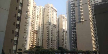 1343 sqft, 2 bhk Apartment in 3C Lotus Boulevard Sector 100, Noida at Rs. 75.0000 Lacs