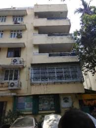 550 sqft, 1 bhk Apartment in Builder On Request Tardeo Tardeo, Mumbai at Rs. 55000