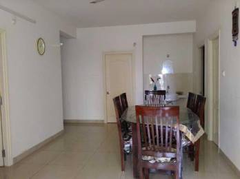 1590 sqft, 3 bhk Apartment in Aparna Hillpark Avenue Miyapur, Hyderabad at Rs. 22000