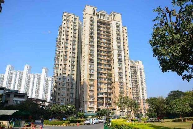 1555 sqft, 3 bhk Apartment in DLF Regency Park II Sector 27, Gurgaon at Rs. 40000