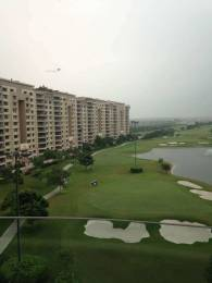 8000 sqft, 5 bhk Apartment in Ambience Caitriona Sector 24, Gurgaon at Rs. 11.2000 Cr