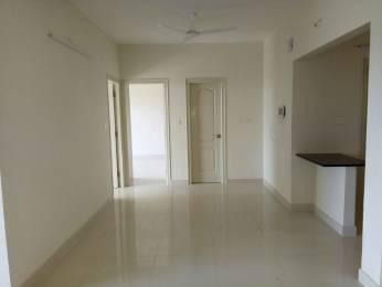 1560 sqft, 3 bhk Apartment in Nitesh Columbus Square Bagaluru Near Yelahanka, Bangalore at Rs. 23000