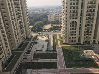 1505 sqft, 3 bhk Apartment in DLF Group Capital Greens Phase I Moti Nagar, Delhi at Rs. 40000