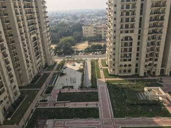 1440 sqft, 3 bhk Apartment in DLF Capital Greens Phase 3 Karampura, Delhi at Rs. 30000
